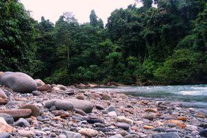 Gunung-Leuser-National-Park-Aceh-Indonesia-003.jpg