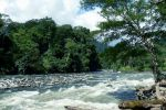 Gunung-Leuser-National-Park-Aceh-Indonesia-004.jpg