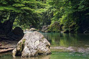 Gunung-Leuser-National-Park-Aceh-Indonesia-005.jpg