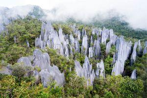 Gunung-Mulu-National-Park-Sarawak-Malaysia-001.jpg