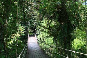 Gunung-Mulu-National-Park-Sarawak-Malaysia-005.jpg