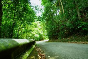Gunung-Pulai-Johor-Bahru-Malaysia-004.jpg