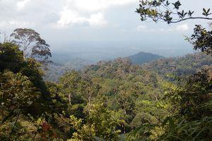 Gunung-Pulai-Johor-Bahru-Malaysia-005.jpg