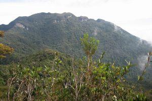 Gunung-Tahan-Pahang-Malaysia-003.jpg