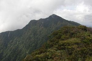 Gunung-Tahan-Pahang-Malaysia-005.jpg