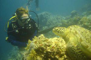 Haad-Yao-Divers-Koh-Phangan-Thailand-003.jpg
