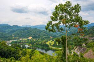 Hala-Bala-Wildlife-Reserve-Narathiwat-Thailand-003.jpg