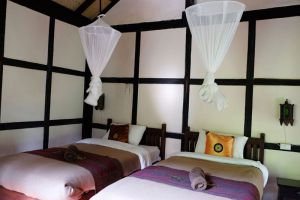 Hillside-Nature-Lifestyle-Lodge-Luang-Prabang-Laos-Room-Twin.jpg