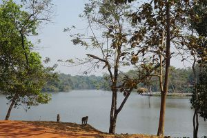 Hlawga-National-Park-Yangon-Myanmar-003.jpg