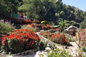 Hmong-Village-Chiang-Mai-Thailand-05.jpg
