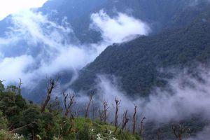 Hoang-Lien-National-Park-Lao-Cai-Vietnam-001.jpg
