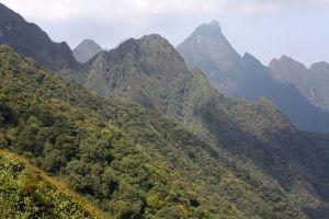 Hoang-Lien-National-Park-Lao-Cai-Vietnam-005.jpg