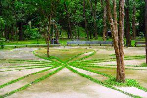 Huay-Kaew-Arboretum-Chiang-Mai-Thailand-01.jpg