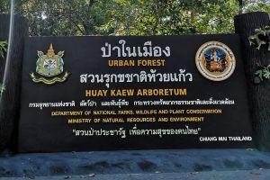 Huay-Kaew-Arboretum-Chiang-Mai-Thailand-02.jpg