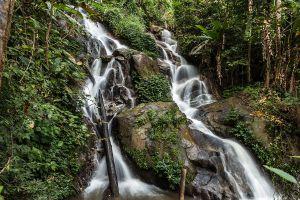 Huay-Kaew-Arboretum-Chiang-Mai-Thailand-06.jpg
