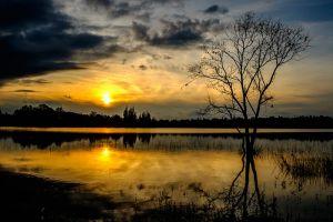 Huay-Tung-Thao-Lake-Chiang-Mai-Thailand-006.jpg