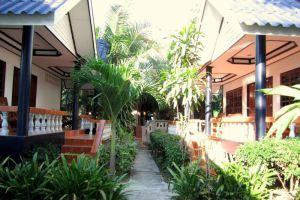 Il-Mare-Beach-Resort-Lanta-Thailand-Surrounding.jpg