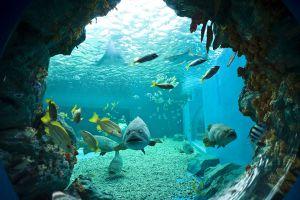 Institute-of-Marine-Science-Burapha-University-Chonburi-Thailand-02.jpg