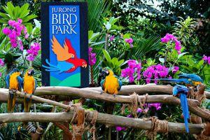 Jurong-Bird-Park-Singapore-005.jpg