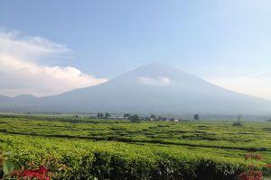 Kerinci-Seblat-National-Park-West-Sumatra-Indonesia-006.jpg