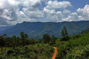Khao-Banthat-Wildlife-Sanctuary-Phatthalung-Thailand-02.jpg