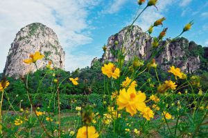 Khao-Chakan-Sakaew-Thailand-02.jpg