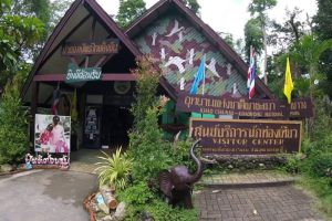 Khao-Chamao-Khao-Wong-National-Park-Rayong-Thailand-002.jpg