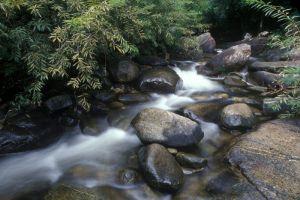 Khao-Chamao-Khao-Wong-National-Park-Rayong-Thailand-004.jpg