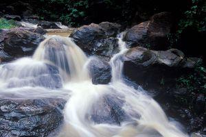 Khao-Eto-Forest-Park-Prachinburi-Thailand-06.jpg