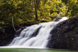 Khao-Phanom-Bencha-National-Park-Krabi-Thailand-002.jpg