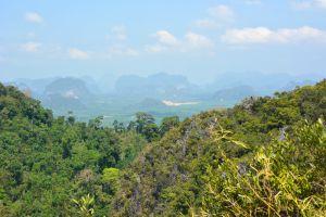 Khao-Phanom-Bencha-National-Park-Krabi-Thailand-005.jpg