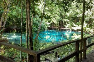 Khao-Pra-Bang-Khram-Wildlife-Sanctuary-Krabi-Thailand-03.jpg