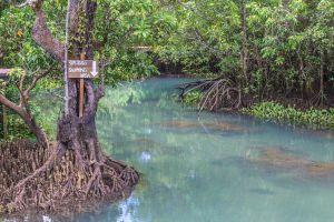 Khao-Pra-Bang-Khram-Wildlife-Sanctuary-Krabi-Thailand-06.jpg