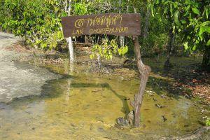 Khao-Pra-Bang-Khram-Wildlife-Sanctuary-Krabi-Thailand-07.jpg