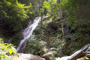 Khao-Pu-Khao-Ya-National-Park-Phatthalung-Thailand-02.jpg