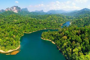 Khao-Sok-National-Park-Suratthani-Thailand-001.jpg