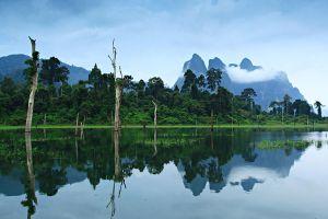 Khao-Sok-National-Park-Suratthani-Thailand-002.jpg