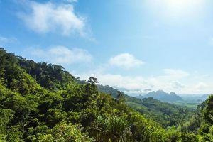 Khao-Sok-National-Park-Suratthani-Thailand-003.jpg