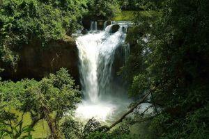 Khao-Yai-National-Park-Nakhon-Ratchasima-Thailand-001.jpg