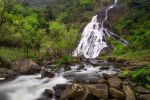 Khlong-Wang-Chao-National-Park-Kamphaengphet-Thailand-04.jpg