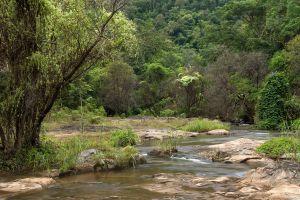 Khlong-Wang-Chao-National-Park-Kamphaengphet-Thailand-06.jpg
