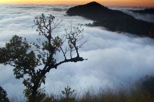 Khun-Chae-National-Park-Chiang-Rai-Thailand-02.jpg