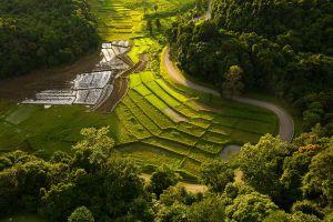 Khun-Phawo-National-Park-Tak-Thailand-05.jpg