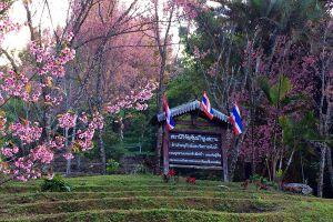 Khun-Sathan-National-Park-Nan-Thailand-06.jpg