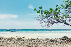 Koh-Lan-Coral-Island-Chonburi-Thailand-03.jpg