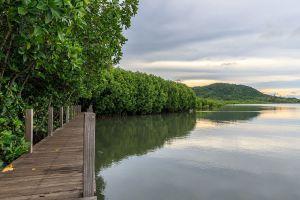 Kung-Krabaen-Bay-Royal-Development-Study-Center-Chanthaburi-Thailand-02.jpg