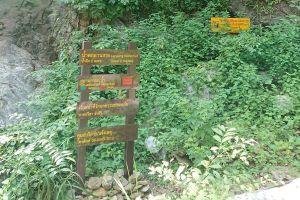 Lan-Sang-National-Park-Tak-Thailand-04.jpg