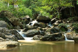Lan-Sang-National-Park-Tak-Thailand-05.jpg
