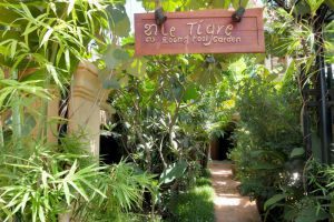 Le-Tigre-Hotel-Siem-Reap-Cambodia-Entrance.jpg