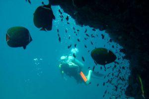 Leisure-Dive-Center-Phi-Phi-Krabi-Thailand-005.jpg